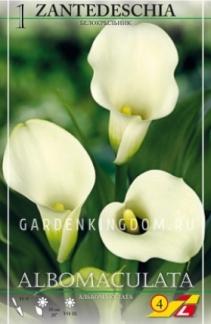 Луковицы, Клубни и Корни растений (весна)