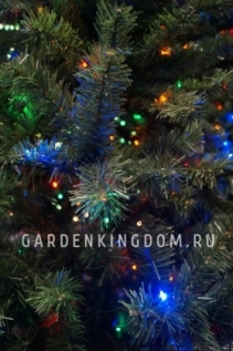 Елки рождественские