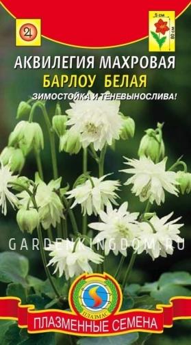 Аквилегия Махровая Барлоу, белая, 9 шт.