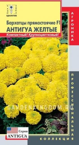 Бархатцы прямостоячие F1 Антигуа Жёлтые, 5 шт.