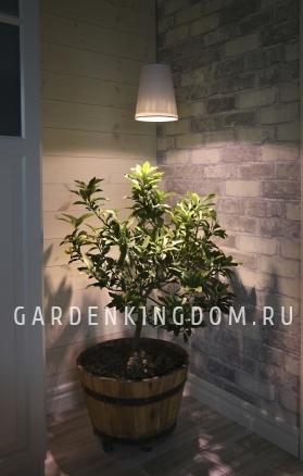 Лампа для подсветки растений 230 V (Вольт), 5 W (Ватт), патрон Е27, белый свет, 1 шт