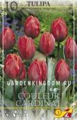 Тюльпан простой ранний COULEUR CARDINAL, 10 шт