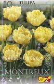 Тюльпан махровый ранний MONTREUX, 10 шт