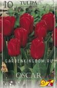 Тюльпан триумф  OSCAR, 10 шт