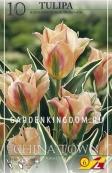 Тюльпан зеленоцветковый  CHINA TOWN, 10 шт