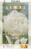 Тюльпан бахромчатый  SNOW CRYSTAL, 5 шт