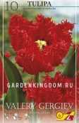Тюльпан бахромчатый  VALERY GERGIEV, 10 шт