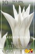 Тюльпан лилейный  WHITE ELEGANCE, 10 шт