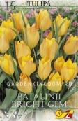 Тюльпан ботанический BATALINII BRIGHT GEM, 15 шт