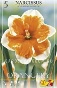 Нарцисс орхидейный  ORANGERY, 5 шт