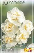 Нарцисс махровый  BRIDAL CROWN, 5 шт