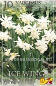 Нарцисс ботанический  ICE WINGS, 10 шт