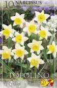 Нарцисс ботанический  TOPOLINO, 10 шт