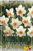 Нарцисс ботанический  REGGAE, 5 шт