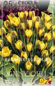 Крокус ботанический  GIPSY GIRL, 25 шт
