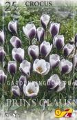 Крокус ботанический  PRINS CLAUS, 25 шт