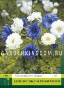 Анемона коронария LORD LIETENANT/MOUNT EVEREST, 7 шт