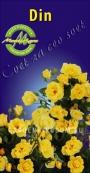Роза плетистая DIN