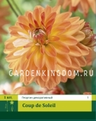 Георгина декоративная COUPE SOLEIL, 1 шт.