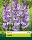 Гладиолус крупноцветковый ALOCHA, 3 шт.