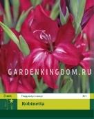 Гладиолус карликовый ROBINETTA, 3 шт.