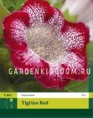 Глоксиния TIGRINA RED, 1 шт.