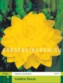 Нарцисс махровый  GOLDEN DUCAT, 2 шт