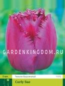 Тюльпан бахромчатый  CURLY SUE, 3 шт