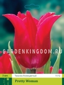 Тюльпан лилейный  PRETTY WOMAN, 3 шт