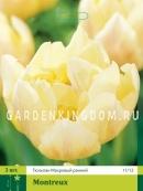 Тюльпан махровый ранний MONTREUX, 3 шт