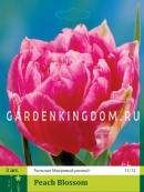 Тюльпан махровый ранний PEACH BLOSSOM, 3 шт