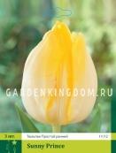 Тюльпан простой ранний SUNNY PRINCE, 3 шт