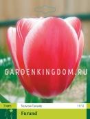 Тюльпан триумф  FURAND, 3 шт