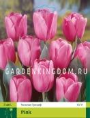Тюльпан триумф  PINK, 3 шт