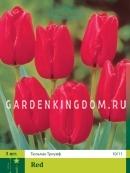 Тюльпан триумф  RED, 3 шт