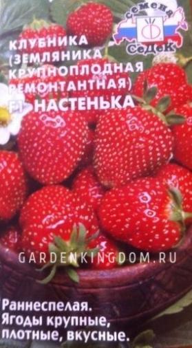 Клубника крупноплодная ремонтантная Настенька F1, 15 шт.