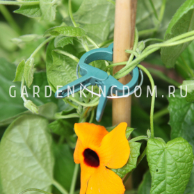 Прищепки для подвязки растений, 4.5 см, пластик, 10 шт