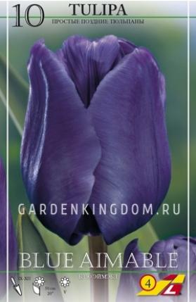 Тюльпан простой поздний BLUE AIMABLE, 10 шт
