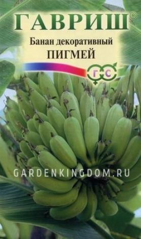 Банан декоративный Пигмей, 3 шт.