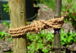 Веревка кокосовая для подвязки растений, 10 м