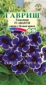 Глоксиния Аванти синяя с белым краем  F1, гранулированные семена,  5 шт. в пробирке