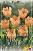 Тюльпан простой ранний APRICOT BEAUTY, 10 шт