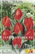Тюльпан простой ранний RED REVIVAL, 10 шт