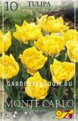 Тюльпан махровый ранний MONTE CARLO, 10 шт