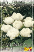 Тюльпан махровый ранний MONDIAL, 10 шт