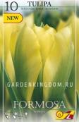 Тюльпан зеленоцветковый  FORMOSA, 10 шт