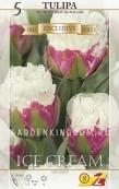 Тюльпан пионовидный  ICE CREAM, 5 шт