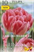 Тюльпан пионовидный  FINOLA, 10 шт
