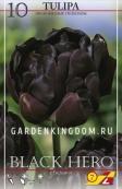 Тюльпан пионовидный  BLACK HERO, 10 шт