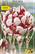 Тюльпан пионовидный  CARNAVAL DE NICE, 10 шт